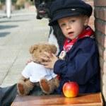 hund, teddy och pojke — Stockfoto