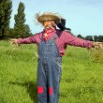 Farmer acting as scarecrow — Stock Photo