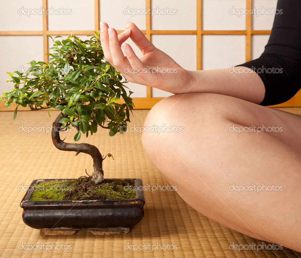 Meditating woman on a japanese tatami mat with bonsai tree — Stock Photo #8864497