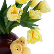 Chicks and tulips - Foto Stock