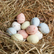 Pastel eggs in nest - Stock Photo