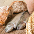 Wine bread and fish - Stock Photo