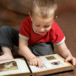 Browing family album - Stock Photo
