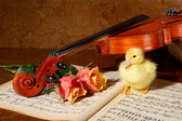 Duck and fiddle — Stock Photo
