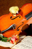 Duck on a fiddle — Stock Photo
