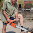Stock Photo: Wood sawing demo