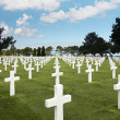 Rows of graves - Stock Photo