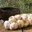 Royalty-Free Stock Photo: Garlic and mortar