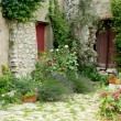 Garden in Provence — Stock Photo