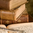 Stock Photo: Torah pointer on books