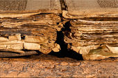 Tattered pages of antique book — Stock Photo