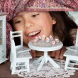 Stock Photo: Tein dollhouse