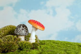 Toadstools for a fairytale — Stock Photo