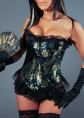 Fancy Corset — Stock Photo