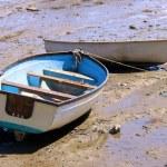 Two Rowboats — Stock Photo