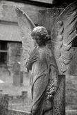 Broken Down Angel — Stock Photo
