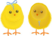 Spring chicken — Vector de stock