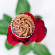 Valentine's Chocolate Rose — Stock Photo