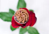 Valentine's Chocolate Rose — Stock Photo