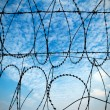 Blue sky and barbed wire — Stock Photo