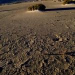 Dry salt lake - desert landscape — Stock Photo #10311718
