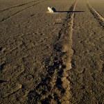 Dry salt lake - desert landscape — Stock Photo #10311821