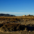 Dry salt lake - Rural landscape — Stock Photo #10311862
