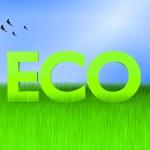 Ecology concpept — Stock Photo #10618556