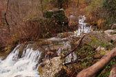 Spain: source of the Mundo River — Stockfoto