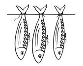 Sea roach. Stockfish — Stock Vector