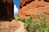 Hike across The Olgas (Australia) — Stock Photo