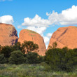 Stock Photo: The Olgas, Australian desert