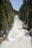 Numa waterfall at Kootenay National Park, Canada — Stock Photo