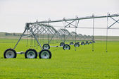 Irrigation sprinklers in a farm field (Canada) — Stok fotoğraf