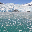 Aialik glacier, Kenai Fjords NP, Alaska — Stock Photo #8624266