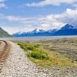 Railroad tracks running through Alaskan landscape — Foto Stock
