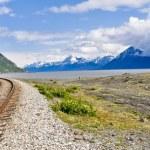 Alaskan manzara ile çalışan demiryolu parça — Stok fotoğraf