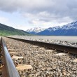 Foto Stock: Railroad tracks running through Alaskan landscape