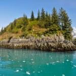 Slate island in Aialik bay, Kenai Fjords NP, Alaska — Stock Photo