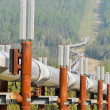Постер, плакат: Trans Alaska Oil Pipeline USA
