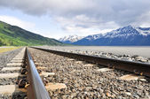 Railroad tracks running through Alaskan landscape — Stok fotoğraf