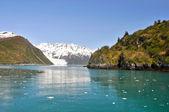 Ardósia ilha na baía de aialik, np fiordes de kenai, alasca — Foto Stock