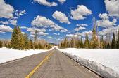 Дорога и заснеженные пейзаж, штат Юта (Сша) — Стоковое фото