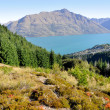 Lake Wakatipu, Queenstown, New Zealand — Stock Photo #8648004