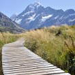 Boardwalk towards Mount Cook, New Zealand — Stock Photo