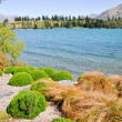 Lake Wakatipu, Queenstown, New Zealand — Stock Photo #8736171