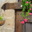 Elegant Window Box in a country house — Stock Photo #8769253