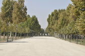 Aranjuez gardens, Madrid (Spain) — Stockfoto