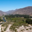 Elqui valley, Chile — Stock Photo