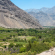 Elqui valley, Chile — Stock Photo #8848799